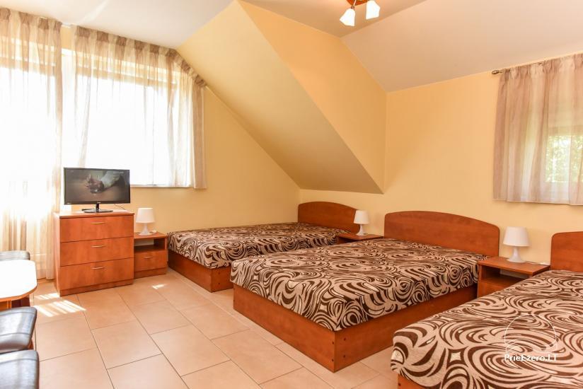 Suraučių svečių namai Aukštadvaryje – kambariai, salė, pirtis, baseinas – šventės ir poilsis - 31