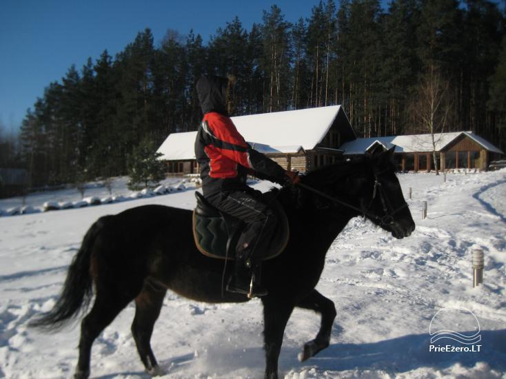 Sodyba Labanoro Dūda Švenčionių rajone ant ežero kranto - 29