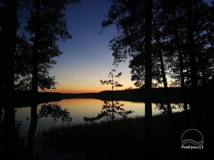 Namelis medyje ant Molėtų ežero kranto - 7