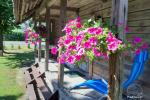 Nuomuojamas namelis - senovinis svirnas - prie Baluošo ežero