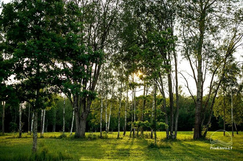 Elnių ūkis ir palapinių stovyklavietė Deer SPA prie Kernavės - 6