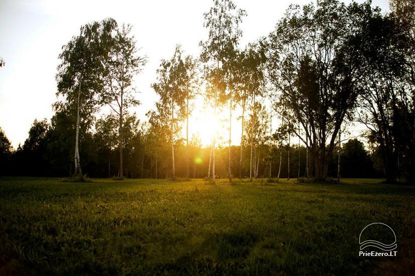Elnių ūkis ir palapinių stovyklavietė Deer SPA prie Kernavės - 7
