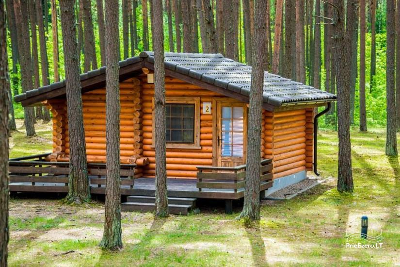Sodyba tik renginiams (stovykloms, konferencijoms, įmonių mokymams) Auksinė giria - 7