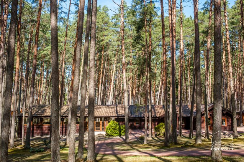 Sodyba tik renginiams (stovykloms, konferencijoms, įmonių mokymams) Auksinė giria - 1