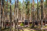 Sodyba tik renginiams (stovykloms, konferencijoms, įmonių mokymams) Auksinė giria