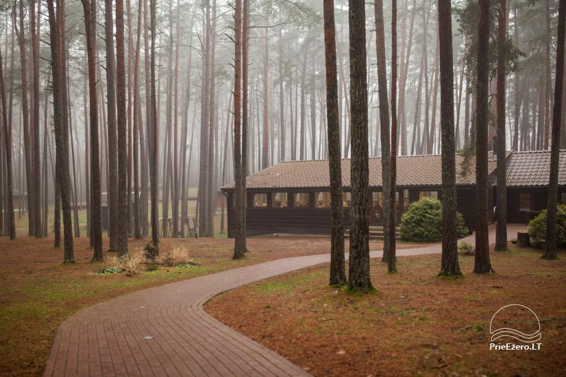 Sodyba tik renginiams (stovykloms, konferencijoms, įmonių mokymams) Auksinė giria - 5