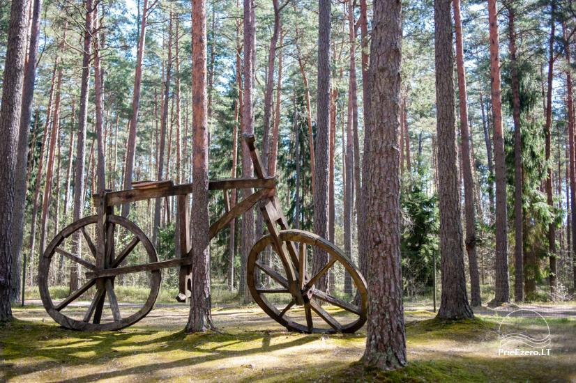 Sodyba tik renginiams (stovykloms, konferencijoms, įmonių mokymams) Auksinė giria - 10