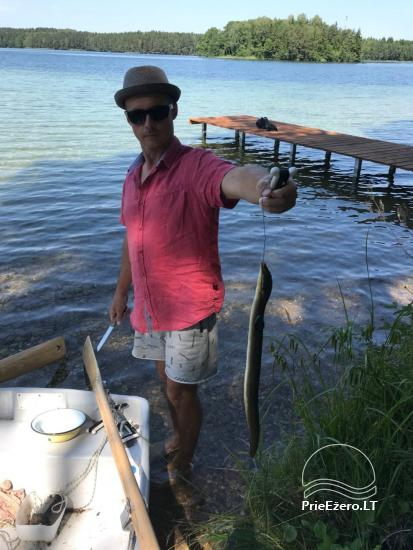 Išnuomoju sodyba su pirtele, valtimi ir pavėsine! Šalia Molėtų! Yra lieptas į Luokesų ežerą! - 3