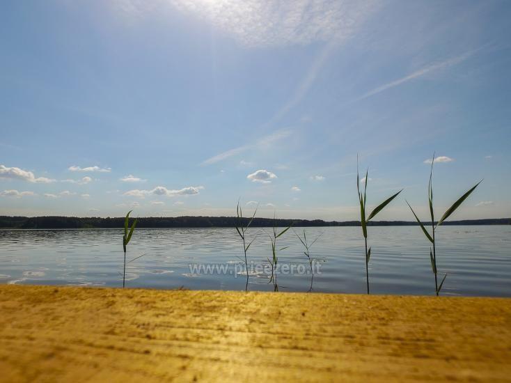 Sodyba Prie Arino: namelio ir pirtelės nuoma MOLĖTŲ rajone prie Arino ežero - 31
