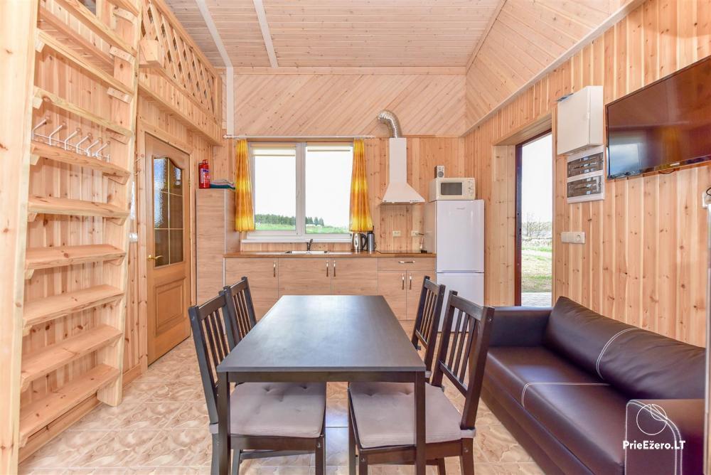 Sodyba Prie Arino: namelio ir pirtelės nuoma MOLĖTŲ rajone prie Arino ežero - 5
