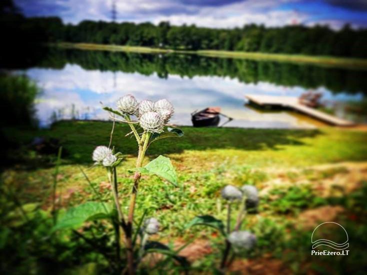 Poilsis Galadusio ežero pakrantej - 5