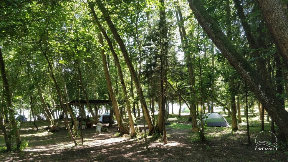 Žalktynės poilsiavietė prie Asvejos ežero - 8