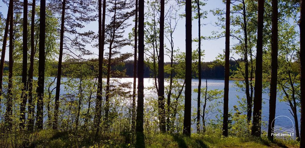 Reginos Maksimovienės sodyba prie Srovinaičio ežero - 15