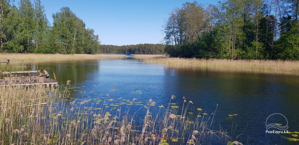Reginos Maksimovienės sodyba prie Srovinaičio ežero - 13