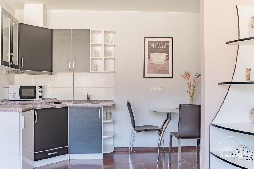 SR Apartamentai - Druskininkai - butų nuoma Druskininkuose - 6