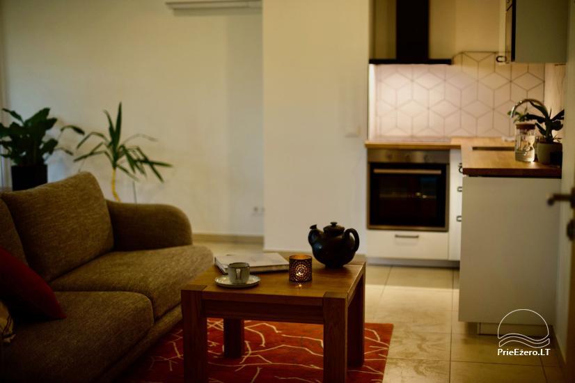 Agluonėnų parko apartamentai - 10
