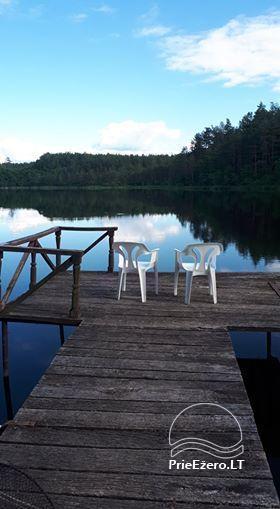 Sodyba ir pirtis ant ežero kranto Labanoro girioje - 21