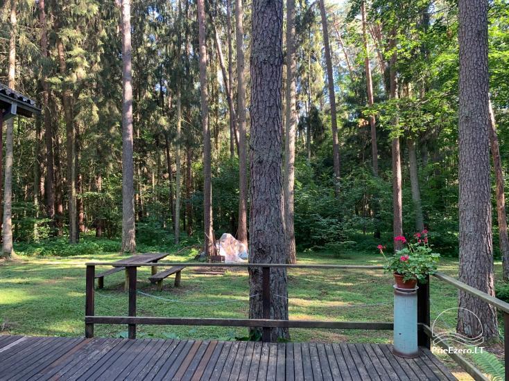 Vasarnamis Birštone miško apsuptyje - 1
