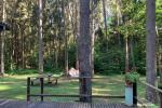Vasarnamis Birštone miško apsuptyje