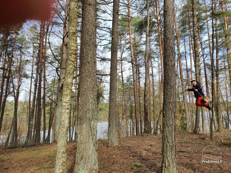 Du nameliai miške vienkiemyje su atskiromis ežero pakrantėmis - 8
