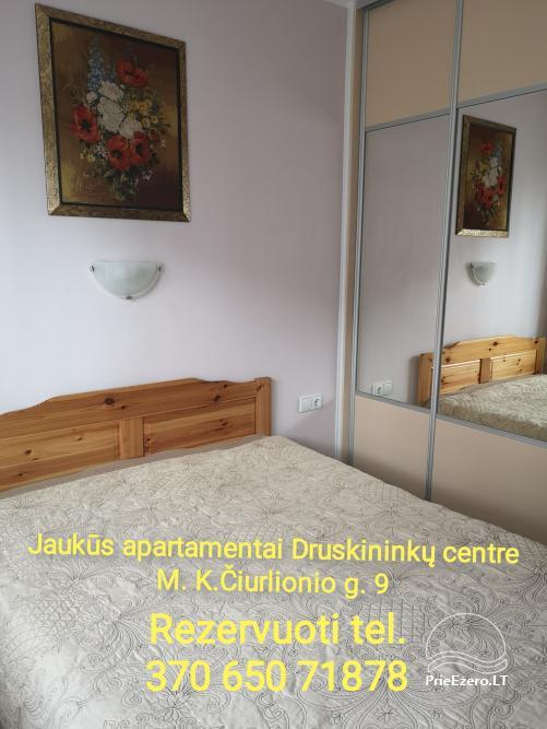 Druskininkų centre nuomojami jaukūs nedideli butai-studijos, Čiurlionio g., šalia Šaulio žiedo. - 12