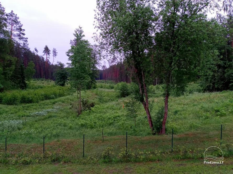 Pirties namelis šalia Druskininkų Pas Marių - 6