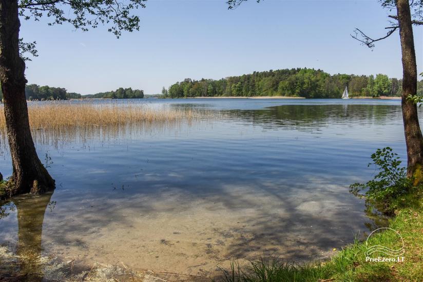 """""""Medaus pirtelė""""– 2-4 žm. prie ežero Trakų raj. - 33"""