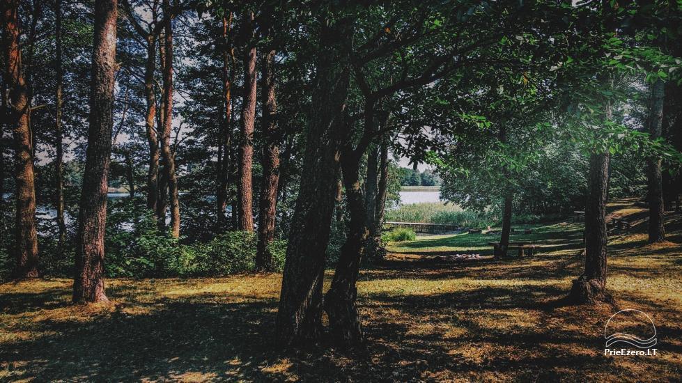 Pusiasalis – unikali erdvė renginiams Trakų rajone prie Skaisčio ežero - 5