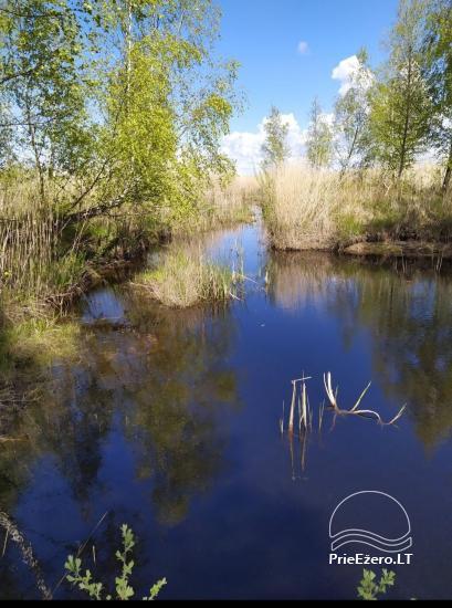 Papės ežero sonata prie pat ežero, netoli jūros - 4