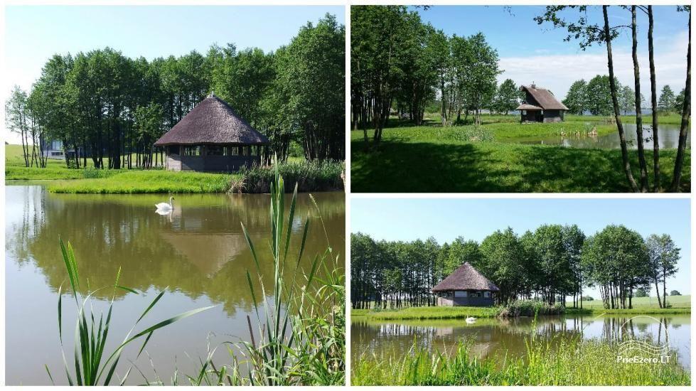 """Namelis ant ežero kranto, Alytaus rajone – sodyba """"Atesys"""" - 38"""