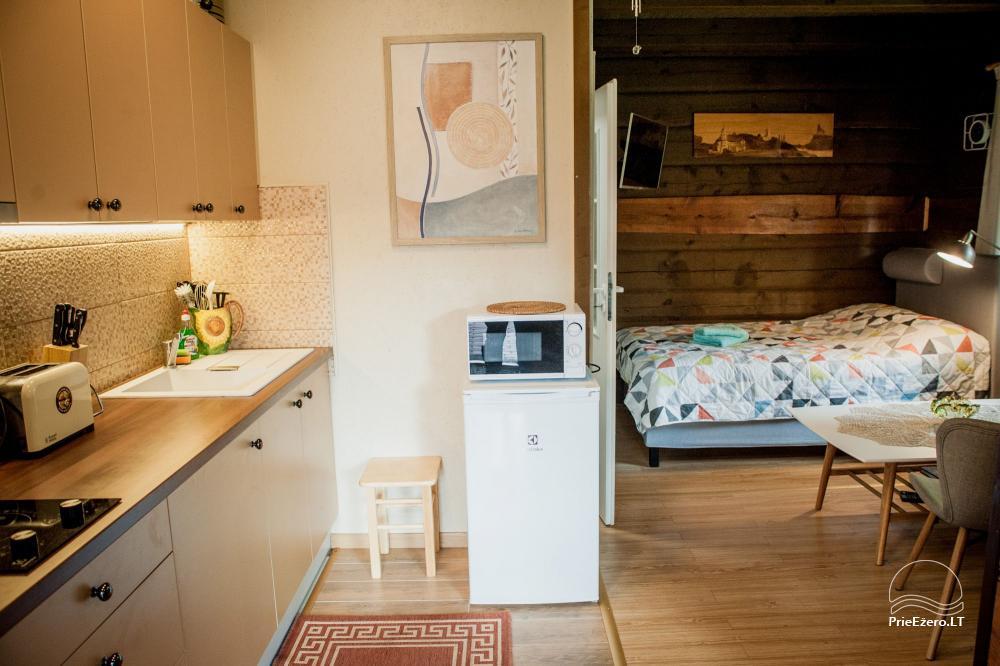 C-LT Lakeside apartment - apartamentų nuoma ant Stirnių ežero kranto - 6