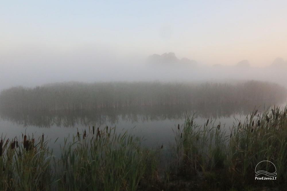 """""""Ažvinčių sodyba"""" Ignalinos rajone ant tvenkinio kranto - 28"""