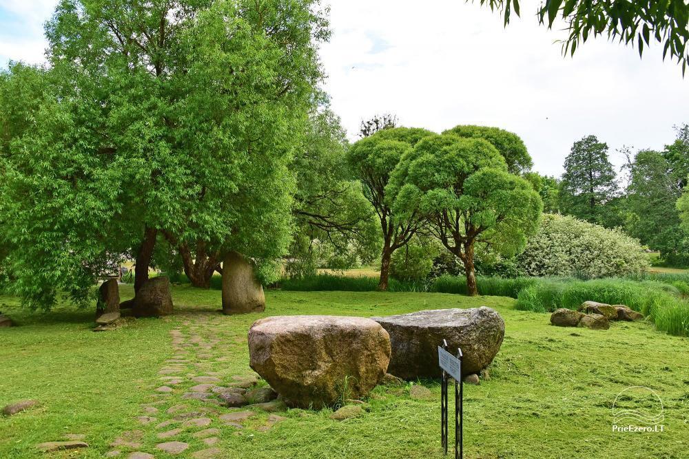 V. Into akmenų muziejus