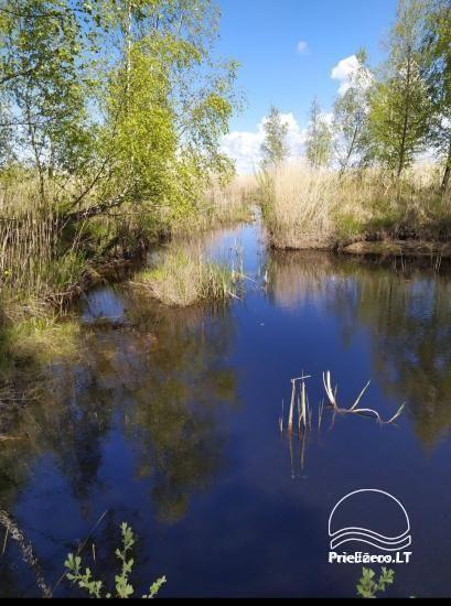Papės ežero sonata prie pat ežero, netoli jūros - 5