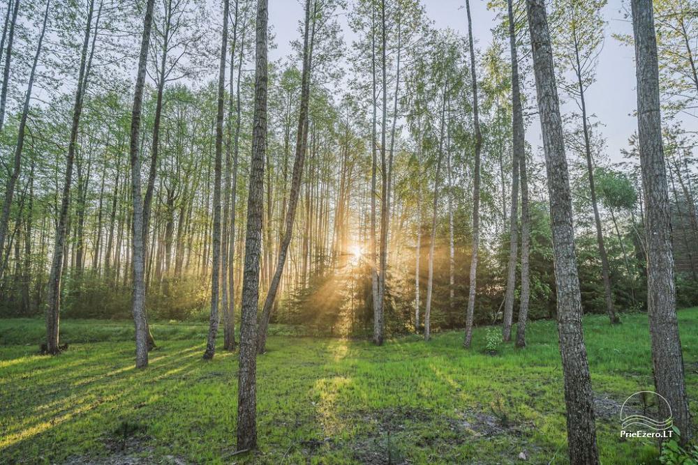 Sodyba Voverė Molėtų rajone, prie ežero Galuonai - 60