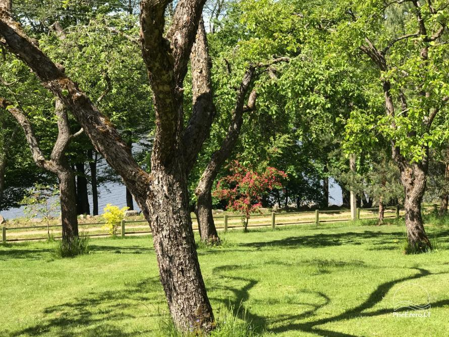Užukalnių sodyba ramiam šeimos poilsiui, Alytaus r., Noso ežeras - 6