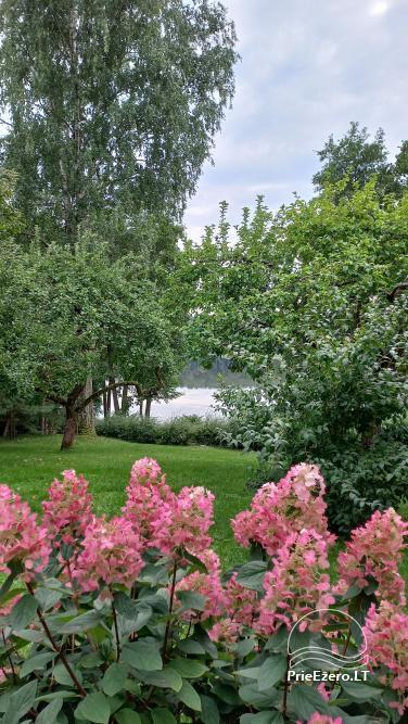 Užukalnių sodyba ramiam šeimos poilsiui, Alytaus r., Noso ežeras - 3