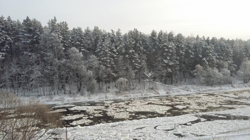 """Sodybos ir pirties nuoma Vilniaus rajone """"Neries vila"""" - 16"""