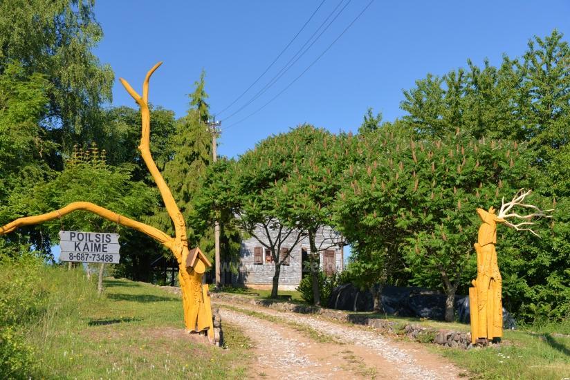 Sauliaus Čepononio sodyba Lazdijų rajone prie Dusios ežero - 2