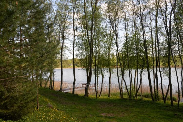 """Poilsio nameliai, pirtis sodyboje """"Žemuogynė"""" prie Gėlių ežero Molėtų rajone - 30"""