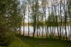 """Poilsio nameliai, pirtis sodyboje  """"Žemuogynė"""" prie Gėlių ežero Molėtų rajone - 6"""