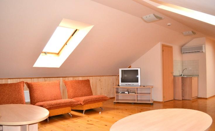 Svečių namai Vila Evelina Druskininkų centre:nemokamai sauna,dviračiai - 7