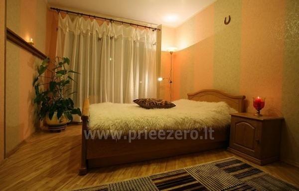 Preciziški apartamentai - butai Druskininkuose netoli sanatorijos Eglė - 1