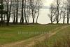 RŪTA - poilsio bazė prie Bebrusų ežero Molėtų rajone - 4