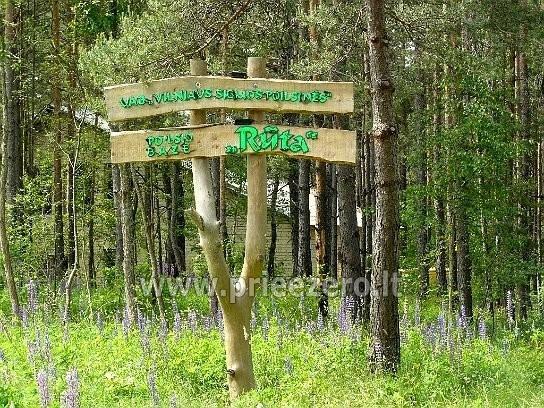 RŪTA - poilsio bazė prie Bebrusų ežero Molėtų rajone - 21