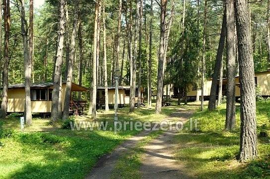 RŪTA - poilsio bazė prie Bebrusų ežero Molėtų rajone - 20