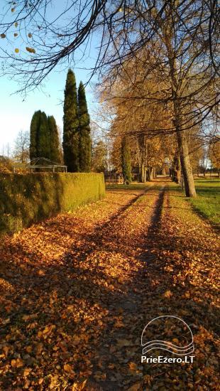 Senoji Sodyba Anykščių rajone prie Šventosios upės - namelių nuoma šventėms bei šeimos, draugų poilsiui - 4