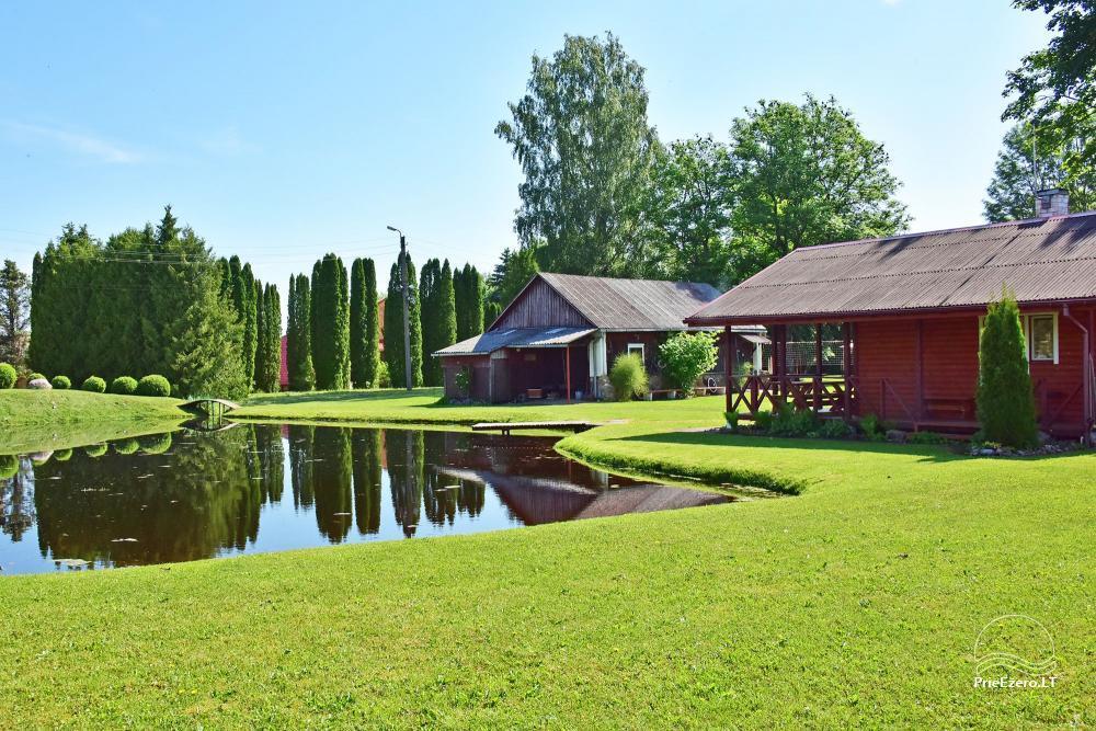 Senoji Sodyba Anykščių rajone prie Šventosios upės - namelių nuoma šventėms bei šeimos, draugų poilsiui - 38