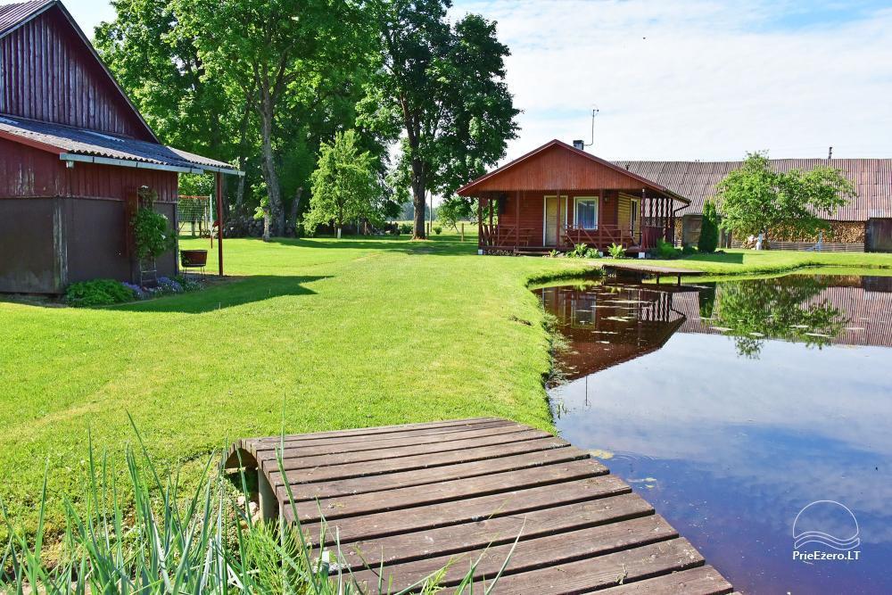 Senoji Sodyba Anykščių rajone prie Šventosios upės - namelių nuoma šventėms bei šeimos, draugų poilsiui - 37
