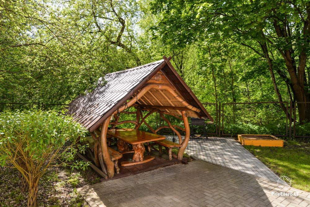 Dineikos parko svečių namai Druskininkų centre ant Ratnyčėlės kranto: kiemelis, supynės, terasa - 12